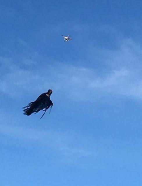 Tío colocó un disfraz de Dementor en su dron para asustar