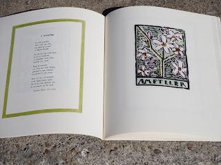 """Poesia i il·lustració de """"L'ametller"""" de: Llibre de les flors, publicat a Barcelona per Barcanova [etc.] l'any 2012 per Teresa Grau Ros"""