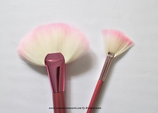 Detail Bulu Fan Brush