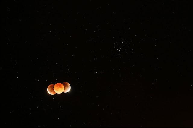 Nguyệt thực toàn phần và Cụm sao Beehive. Hình ảnh: Tunç Tezel (TWAN).