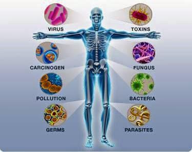 virus yang merosakkan sistem imun
