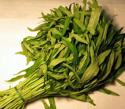 Jenis Sayuran untuk Umpan Mancing nila tawes bawal braskap gurame