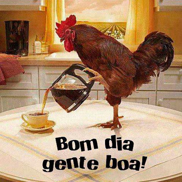https://www.emotioncard.com.br/imagens-de-bom-dia/