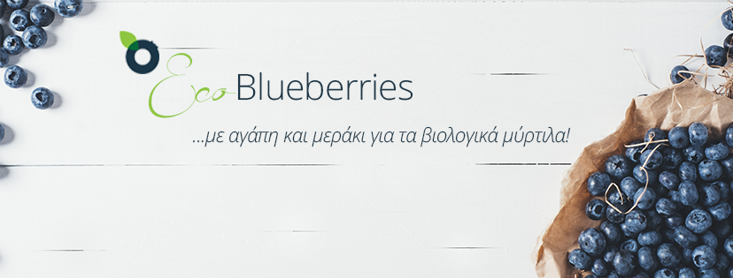 ecoblueberries