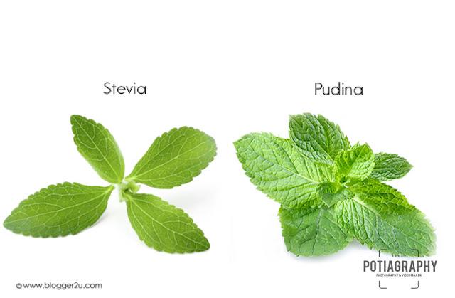 Perbezaan Stevia dan Pudina