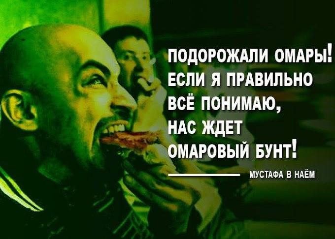 Безупречная логика. Александр Зубченко