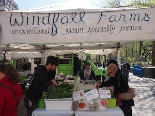 union_square_greenmarket