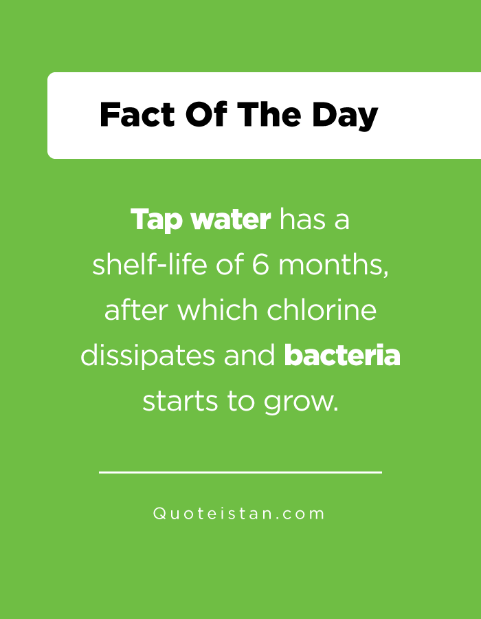 Tap water has a shelf-life of 6 months, after which chlorine dissipates and bacteria starts to grow.