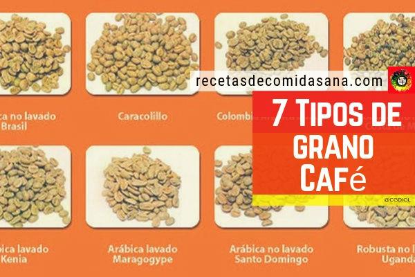 Conoce los 7 granos de café más utilizados del mundo gracias a la Globalización