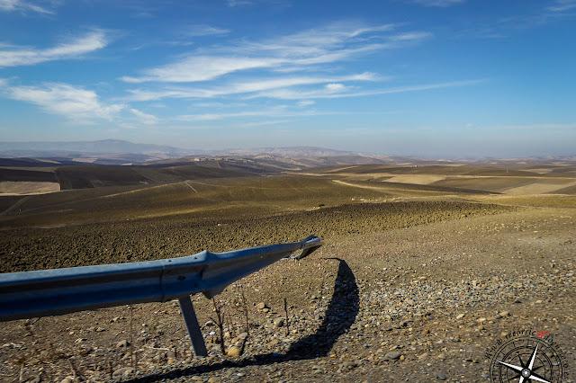 Campos de cereal y olivo cerca de Volubilis