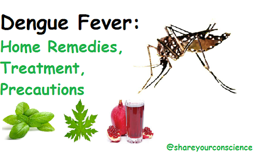Dengue Fever: Home Remedies, Treatment, Precautions ~ Share Your Conscience: A Knowledge Sharing Place