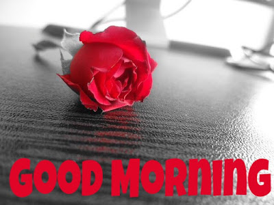Good Morning Wishes: Best Good Morning Messages & quotes