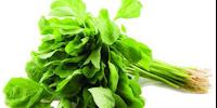 Manfaat Dan Kasiat Sayur Bayam Bagi Kesehatan Tubuh Kita