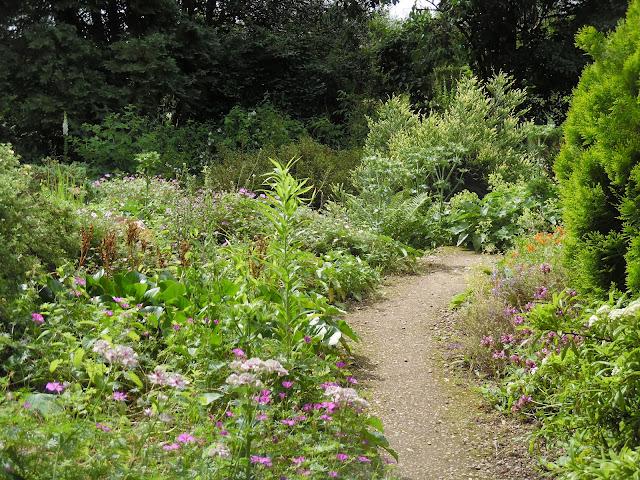naturalistyczny ogród, ścieżka w ogrodzie, ogród angielski