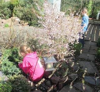 Easter Egg Hunt in the Garden
