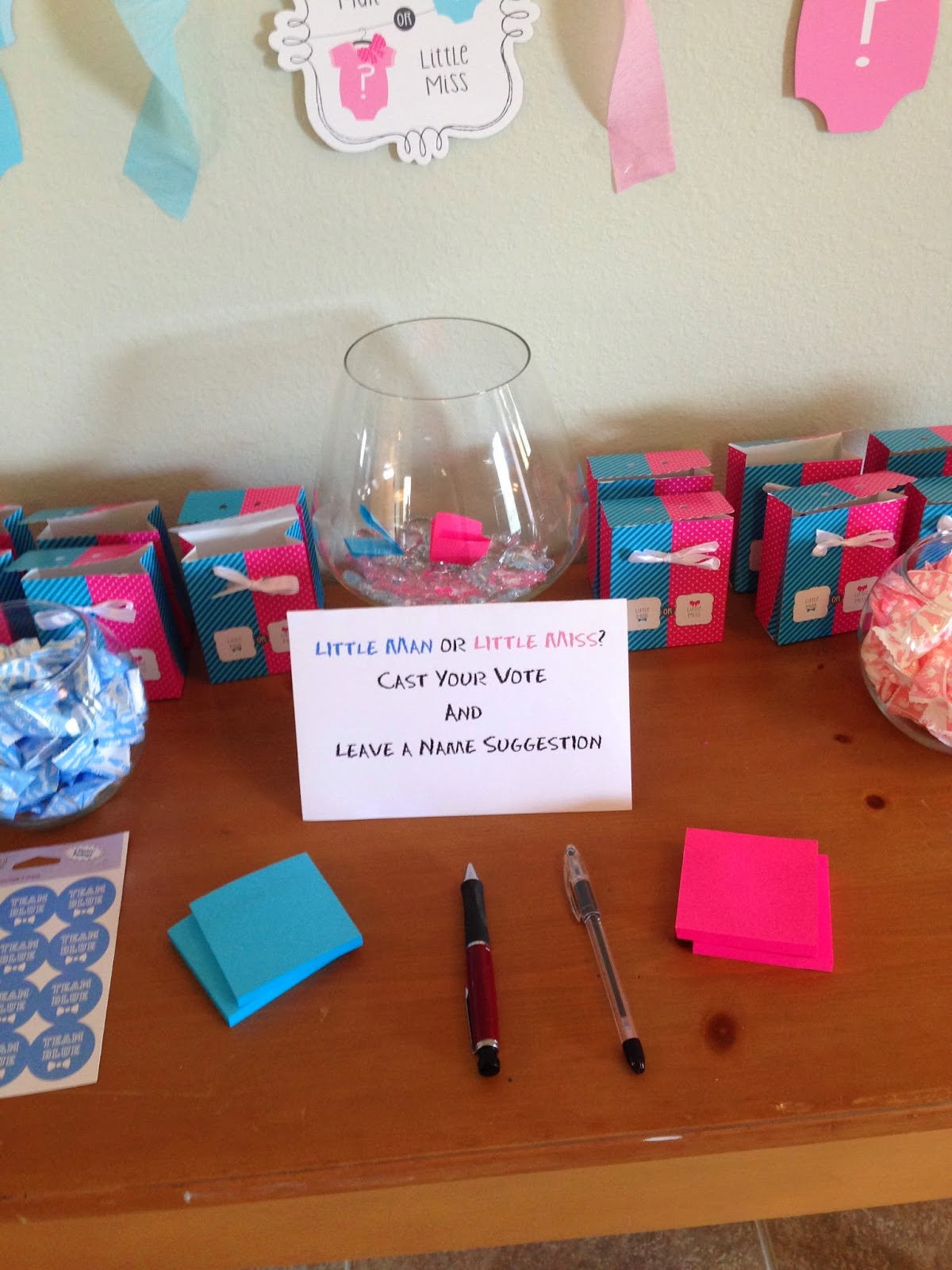 Project Randi Little Man Or Little Miss Gender Reveal Party