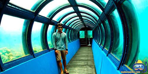 aquarium terbesar di pulau putri