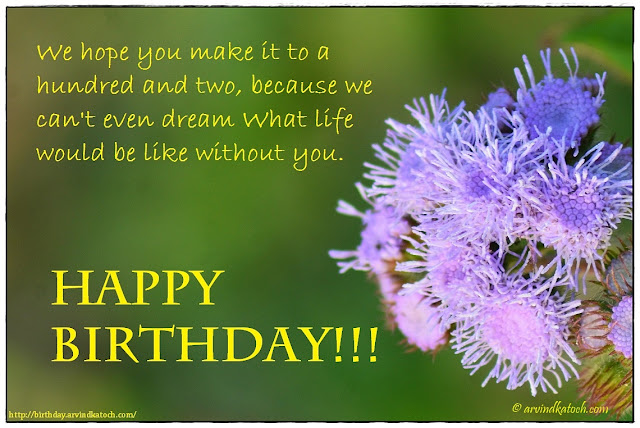 Beautiful, Happy Birthday Card, hope, hundred, dream, wild flower