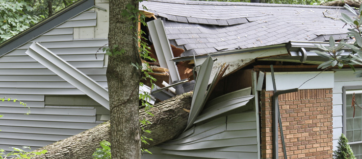 Tree fell damaged house in Atlanta Georgia