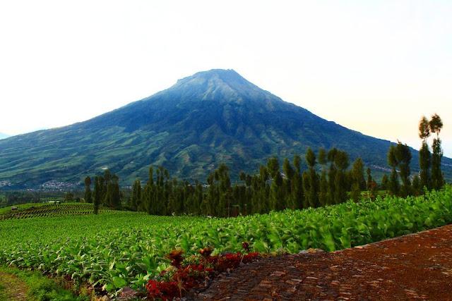 foto pemandangan gunung sumbing dari posong
