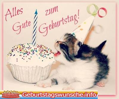 Geburtstagswünsche für Ihre Haustiere Katze