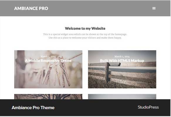 Ambiance Pro Theme Award Winning Pro Themes for Wordpress Blog : Award Winning Blog
