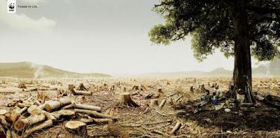 El paisaje terrestre