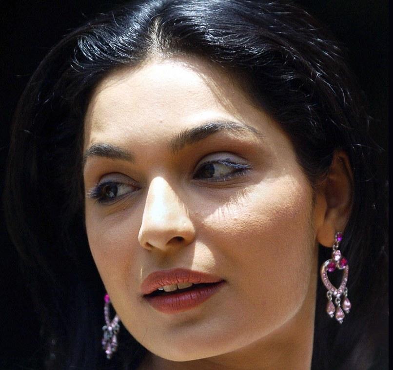 Porn Star Actress Hot Photos For You Bollywood Actress -3048