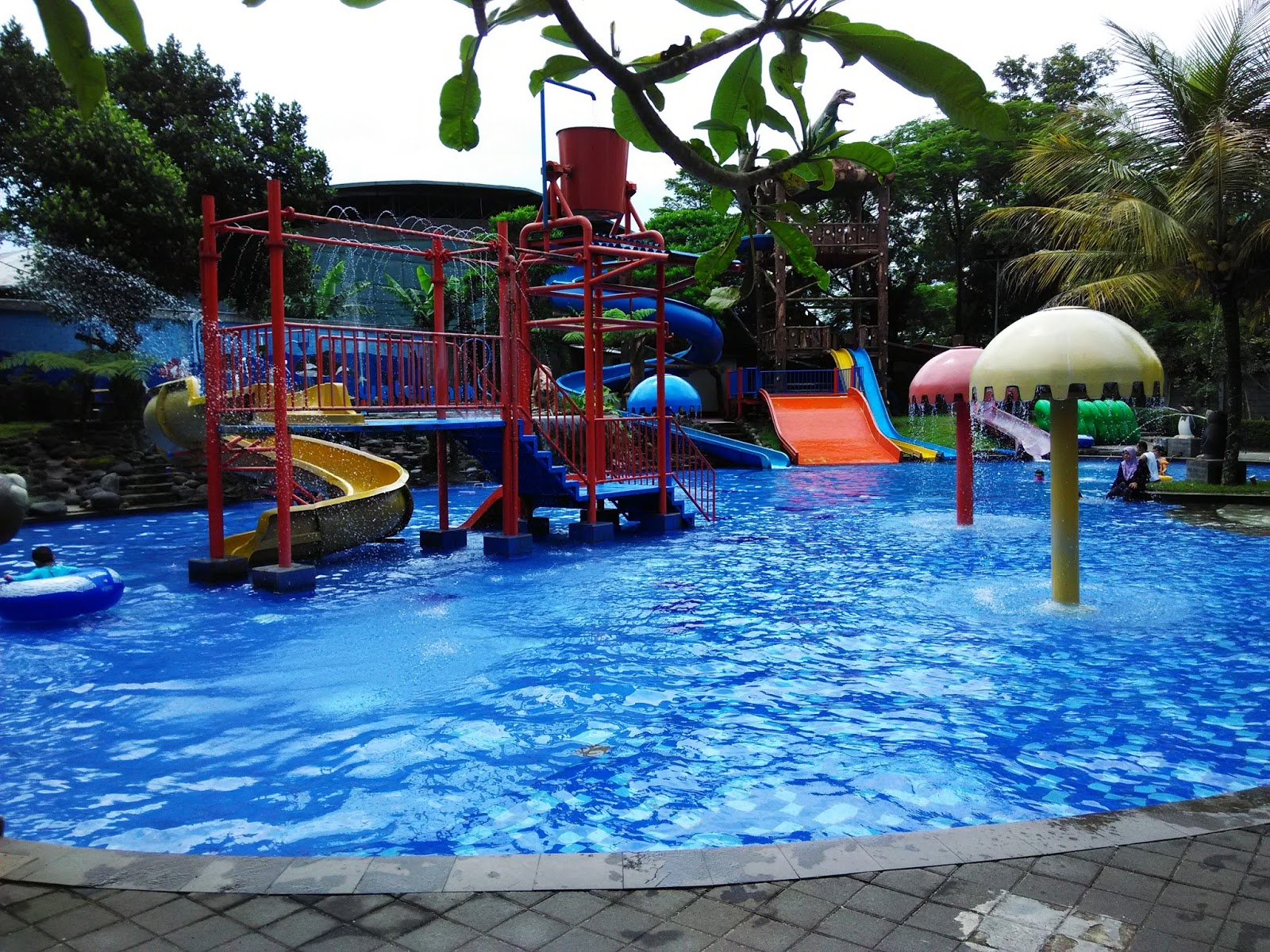 Swimming Pool Oasis : Artsani s siliwangi swimming pool oasis