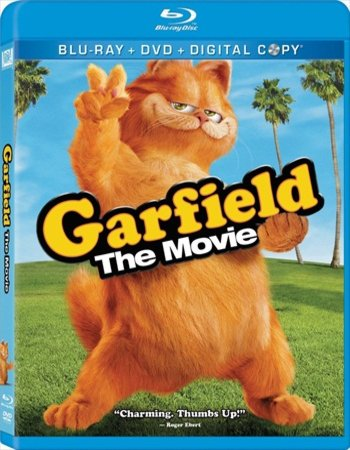 Garfield (2004) Dual Audio Hindi 480p BluRay x264 250MB