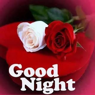 night wish with sweet rose image
