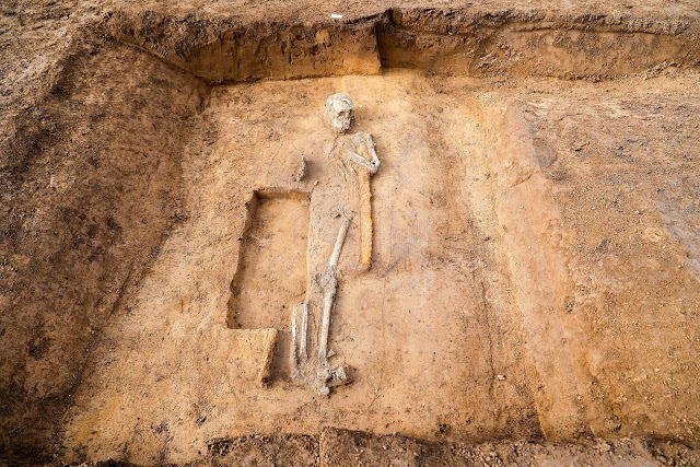 Merovingian necropolis with warriors, horses and unusual burials unearthed in Germany