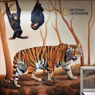 Jasa Tukang Cat Lukis Dinding 3 Dimensi Surabaya Jawa Timur NATIONAL GEOGRAPHIC