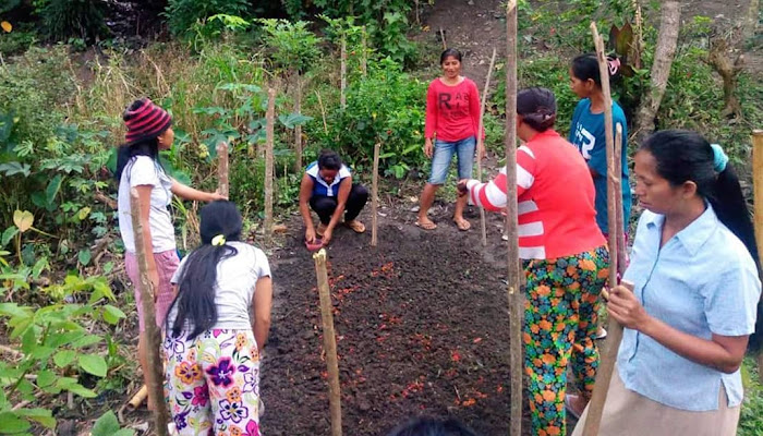 Perempuan Adat Moa Pejuang Agraria (PAMPA)