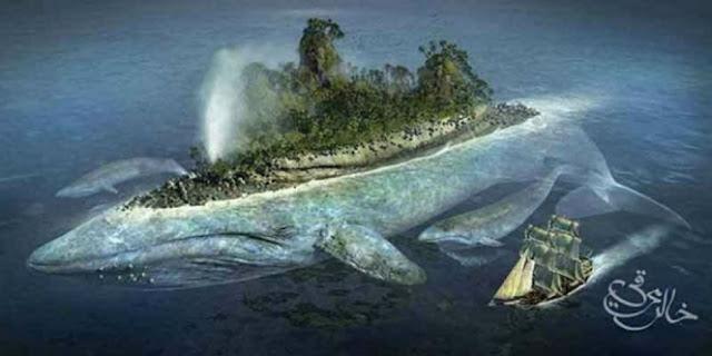 Misteri Tentang Ikan Raksasa Nabi Yunus yang Katanya Masih Hidup Sampai Sekarang, Mistis!