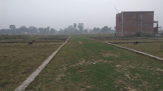 Plot in Naushad Gorakhpur, Residential Plots for sale in Naushad Gorakhpur, Land for Sale in Naushad Gorakhpur, Property in Naushad Gorakhpur, Plots for sale in Naushad Gorakhpur, Land in Naushad Gorakhpur, Residential Properties in Naushad Gorakhpur, Naushad, Gorakhpur, Plot, Sale, Plot price in Naushad Gorakhpur, Residential, Properties, Property, Real Estate, Agent, Property Dealer, Land, Apartments, House, Villa, Flats,