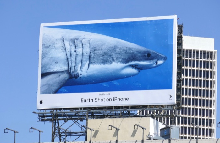 Earth Shot on iPhone Shark billboard