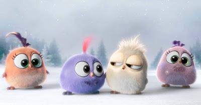 angry-birds-made-from-fur-looks-like-zoozoo