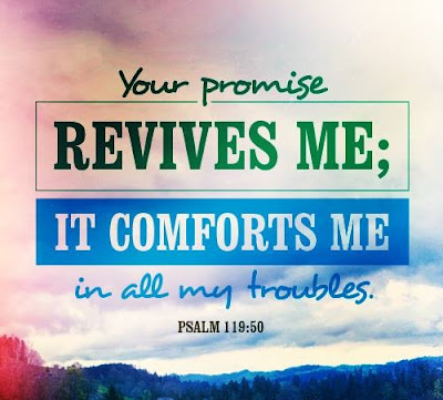 Words of Comfort: Daily Favor Blog Psalm 119:50