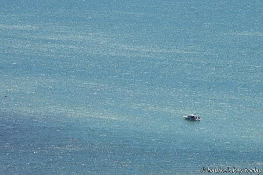 A pleasure boat on Hawke Bay, just off Sandy Beach, photographed from the Bluff Hill Lookout, Napier, in hot, sunny, summer weather. photograph