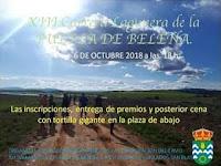 https://calendariocarrerascavillanueva.blogspot.com/2018/07/xiii-carrera-lagunera-puebla-de-belena.html
