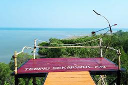 Mengenal Desa Daun Sangkapura Bawean
