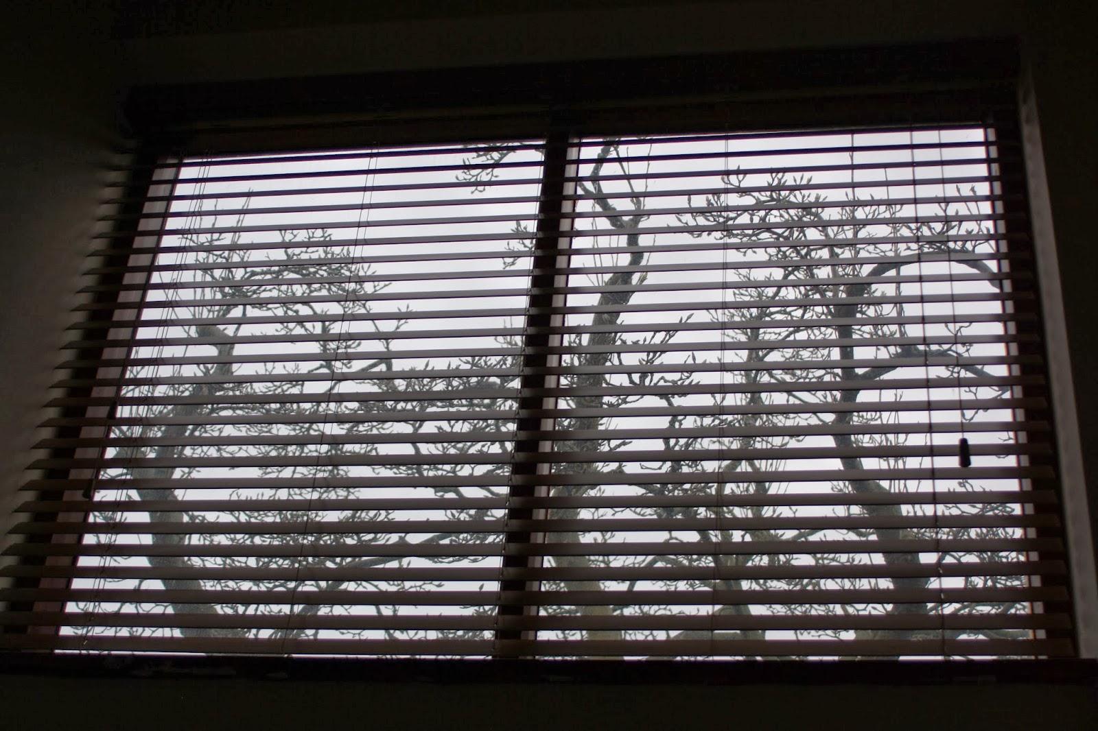 Window-new-house-silhouette