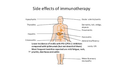 http://www.slideshare.net/spa718/immunooncology-in-lung-cancer