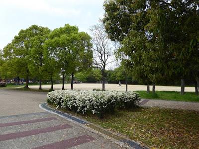 深北緑地公園 自由広場