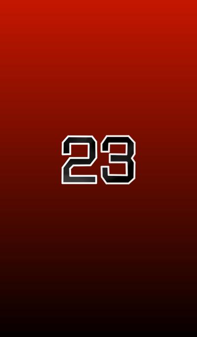 basketball player 23