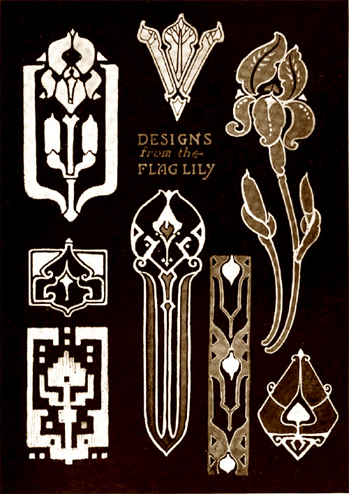 Designs from the Flag Lily
