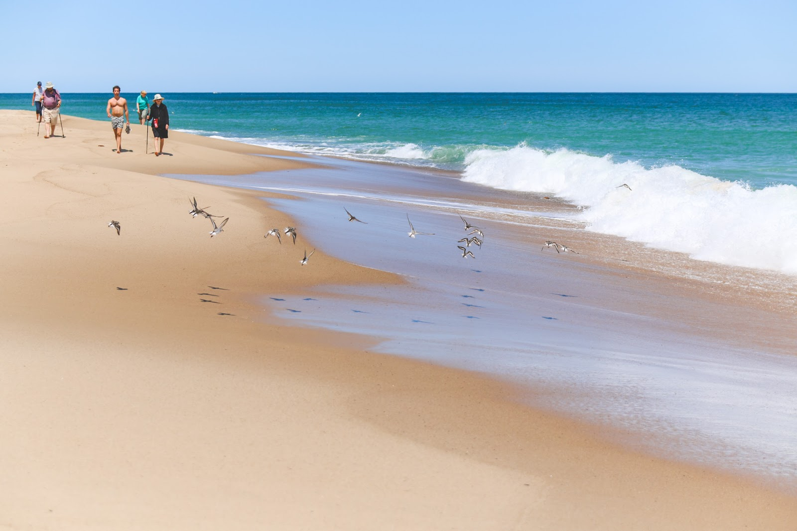 Marvelous Cape Cod 5 Nantucket Part - 11: The Natural Beauty Of The Cape Cod National Seashore The Journey