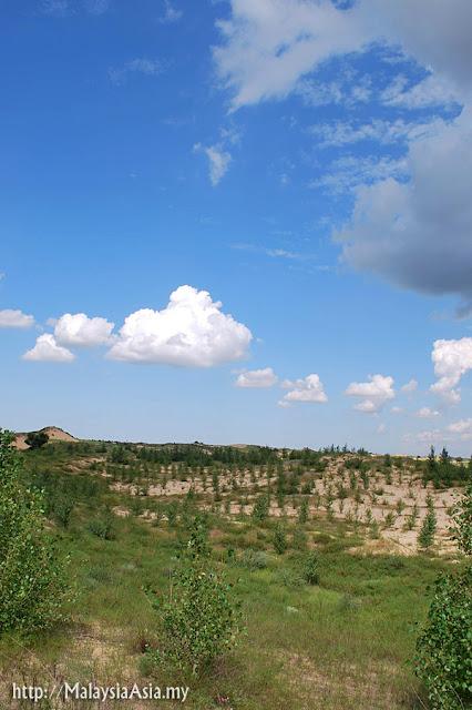 Mongolia Wafang