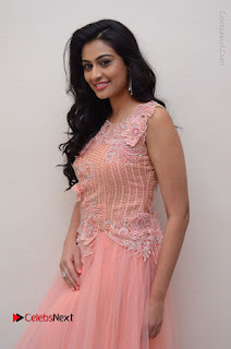 Actress Neha Hinge Stills in Pink Long Dress at Srivalli Teaser Launch  0005.JPG
